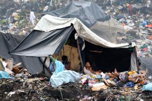 Die Müllkippe (12)