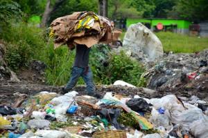 Die Müllkippe (5)