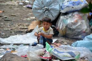 Die Müllkippe (6)